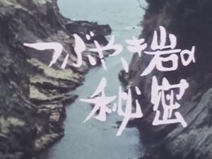 テレビドラマ版つぶやき岩の秘密