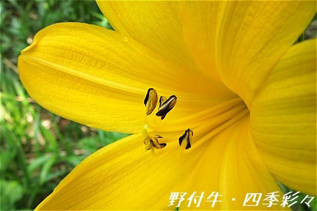 s-C20160527-095745-0.jpg