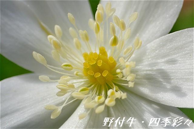 s-O20160507-135159-0.jpg