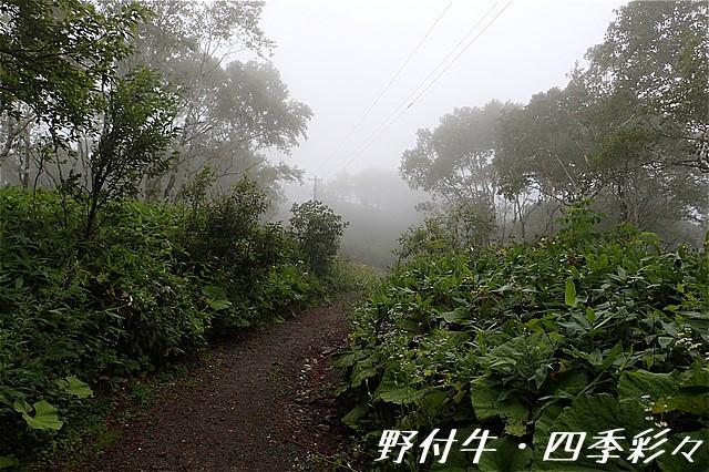 s-O20160816-103200-0.jpg