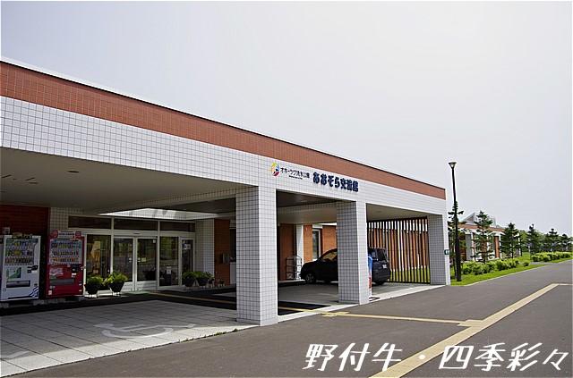 s-P20160712-104633-0.jpg