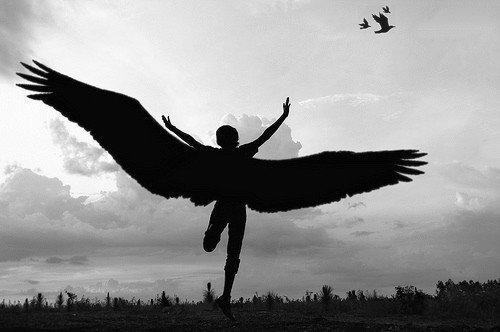 羽 飛び立つ 飛翔