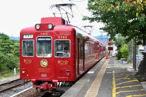 IMG_9444 うめ星 電車