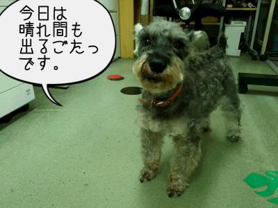 moblog_dc42daf5.jpg