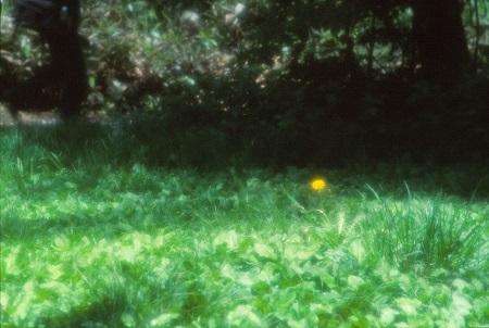 20160601_noririn.jpg