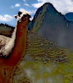un16ペルーでは
