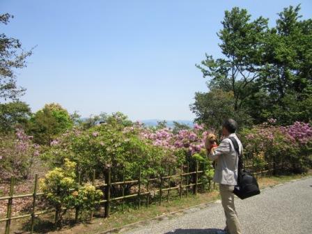 IMG_492016GW嵐山