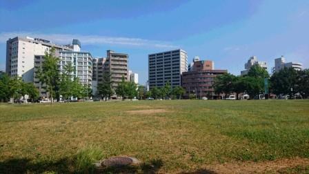 DSC_082516・8枯れ広場