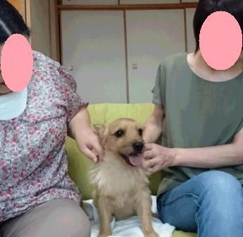 DSC_0900 16・8・28花&ゆずママs2