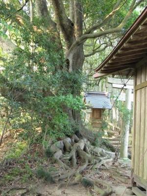 若王神社-02
