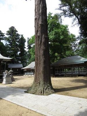 大戸神社-102