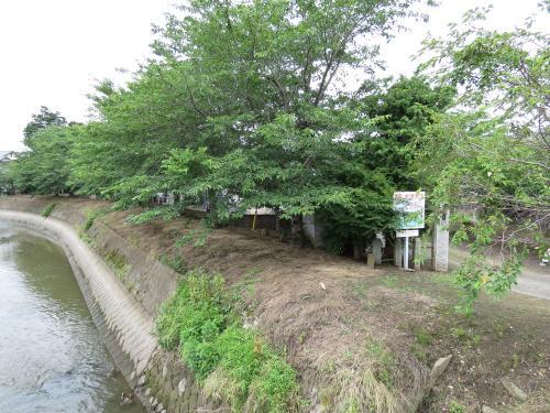 浄土寺-42