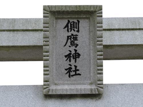 小菅側鷹-2