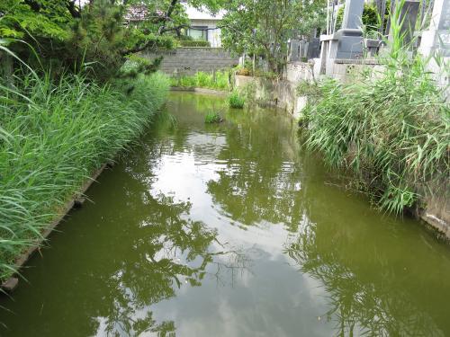 大乗寺-56