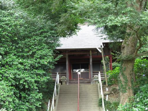 薬師寺-101