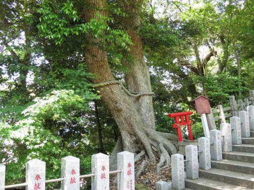 大鷲神社-18