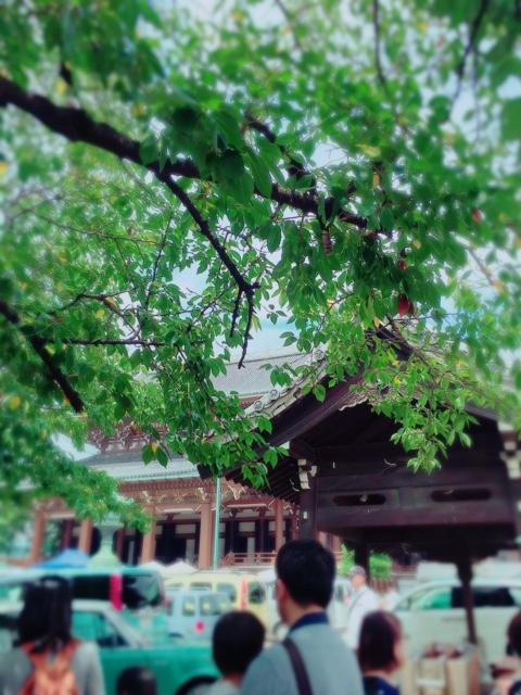 2016.8.28東別院手づくり朝市①