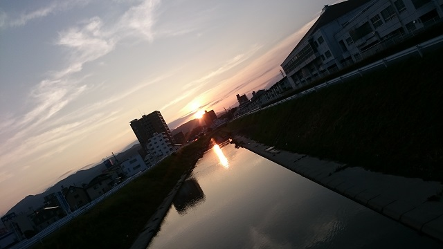 DSC_3761.jpg