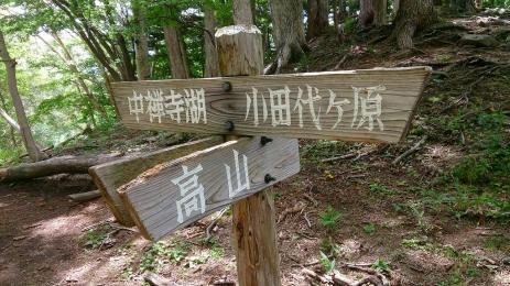 2016Aug_Odashirosenjogahara_20.jpg