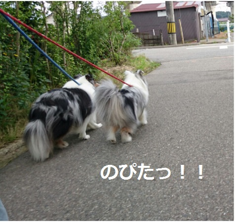 DSC_5791.jpg