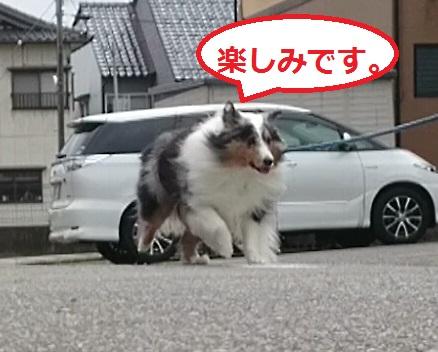 MOV_7629_000111.jpg