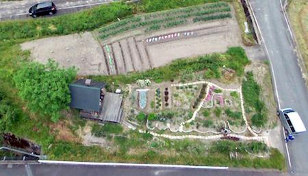 ドローン280513野菜畑花畑