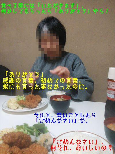 DSC_0065_201604252100158a9.jpg