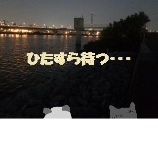 47-1_20160912111342833.jpg
