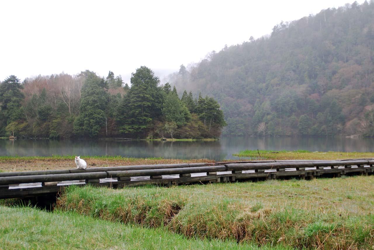 DSC_9550湯ノ湖