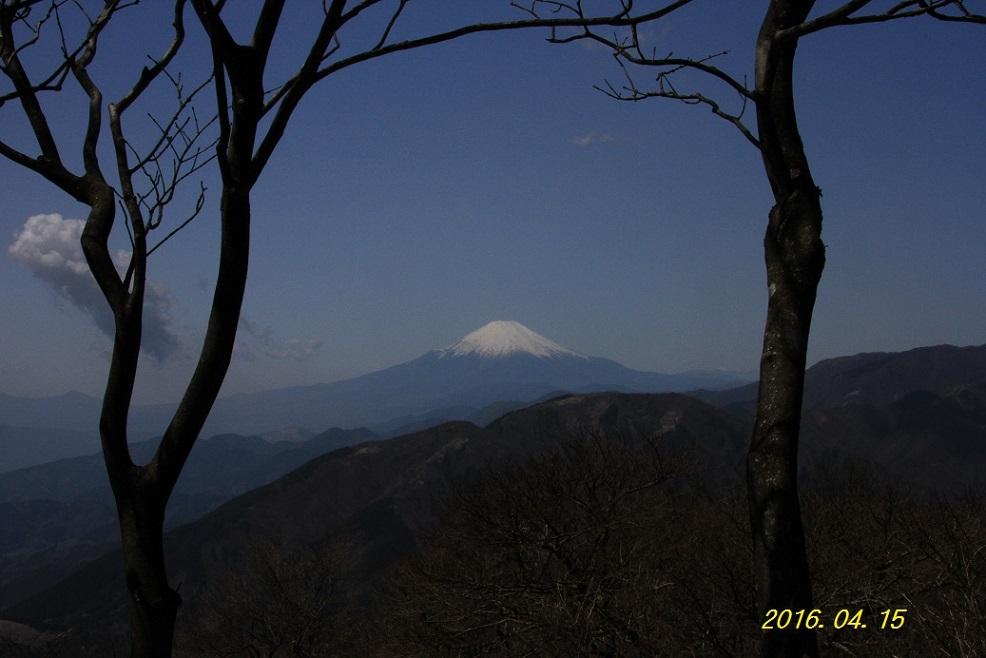 IMG_7136-1.jpg