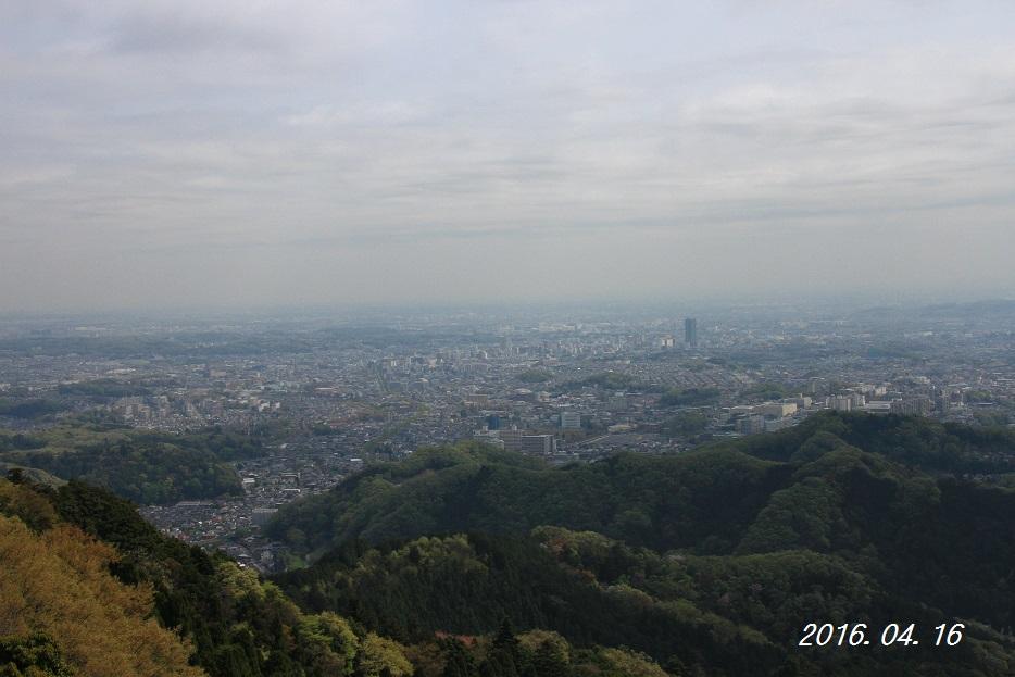 IMG_7169-1.jpg