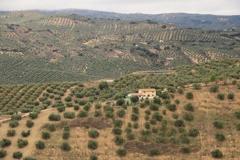 2051 Iglesia de la villa