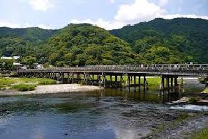 joeyarashiyama.jpg