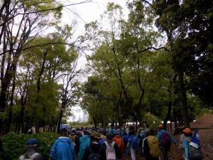 20160417_03大阪城公園