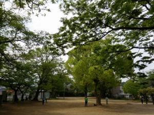 20160424_02昭和公園