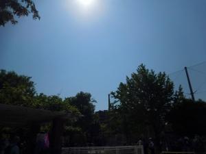 20160501_02長池公園
