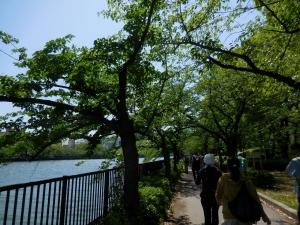 20160505_05大川沿い