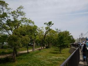 20160508_04毛馬桜之宮公園