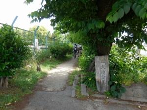 20160508_18大枝公園