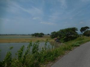 20160515_13姉川沿い