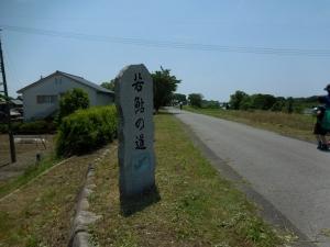 20160515_22若鮎の道