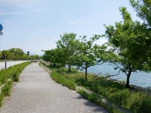 20160515_26びわ湖湖畔