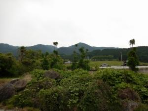 20160529_18葛城山系