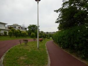 20160604_21泉が丘緑道