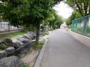 20160604_27家原大池公園
