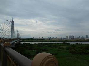 20160625_07菅原城北大橋