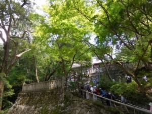 20160626_10葛木坐火雷神社