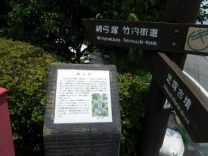20160626_17綿弓塚