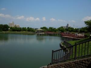 20160626_29今池親水公園