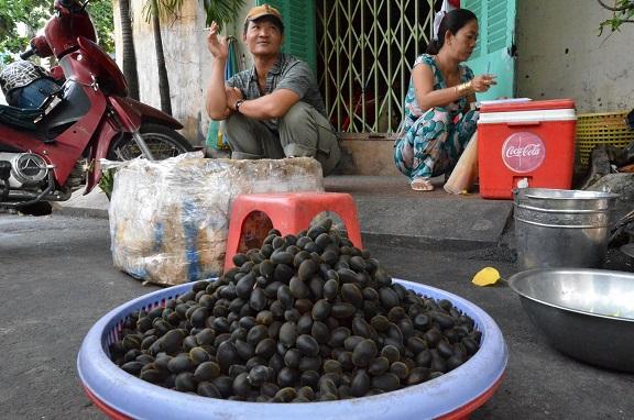 売られるカンランの実。ベトナム・ホーチミン市